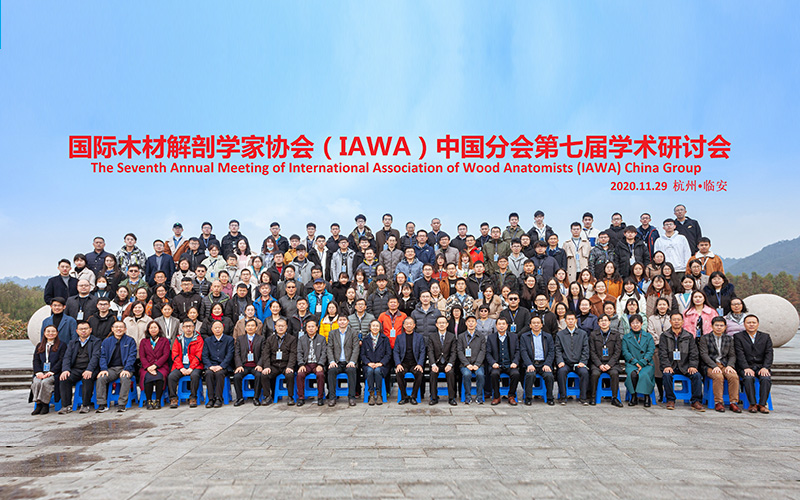 The 7th IAWA-China Group Annual Meeting at Lin-an, China, November 28-29, 2020